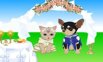 Game-wedding-dress-met-kat-en-hond